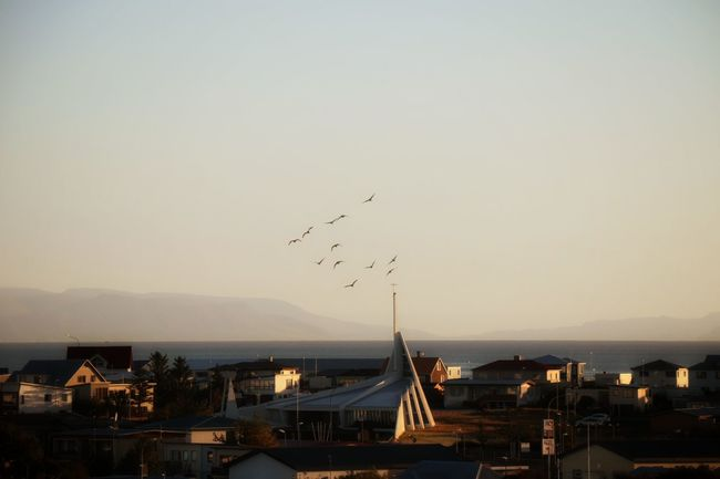 Church Njarðvik Bird Architecture Flying Clear Sky Town Mountain Day Outdoors Mountain Range Autumn Morning Light