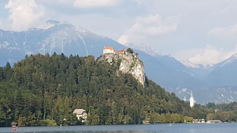 Bled Bled Castle Bled Island Bled Lake Slovenia BledCastle Castle Slovenia Architecture Beauty In Nature Day Mammal Mountain Mountain Range Nature No People Outdoors Range Scenics Sea Sky Snow Tree Water