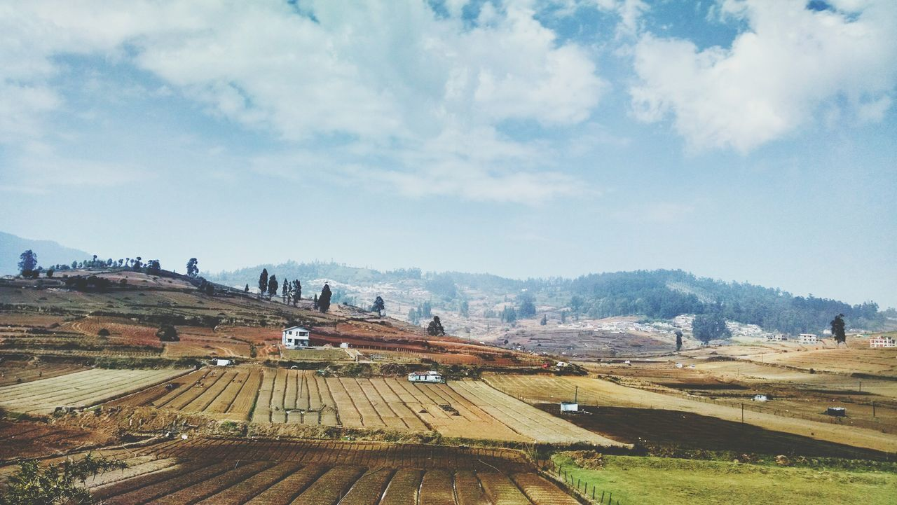 Terrace Gardening Hillstation Hi Hello World Beautiful Day Incredible India Open Edit Popular Photos Ooty The EyeEm Facebook Cover Challenge