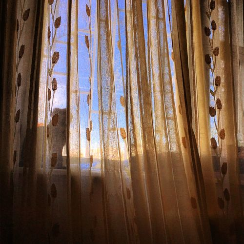 явижуеготаким Catorbird Cats 🐱 Cat Lovers Cat Eyes Catstagram Perfect Nice Atmosphere Beautiful Catoftheday Likeforlike #likemyphoto #qlikemyphotos #like4like #likemypic #likeback #ilikeback #10likes #50likes #100likes #20likes #likere Nice Heat Cosmos Flower Autumn Great Atmosphere Cat♡ Myworld Happymoments явижуихтакими Nice View Nice Weather Явижуеетакой