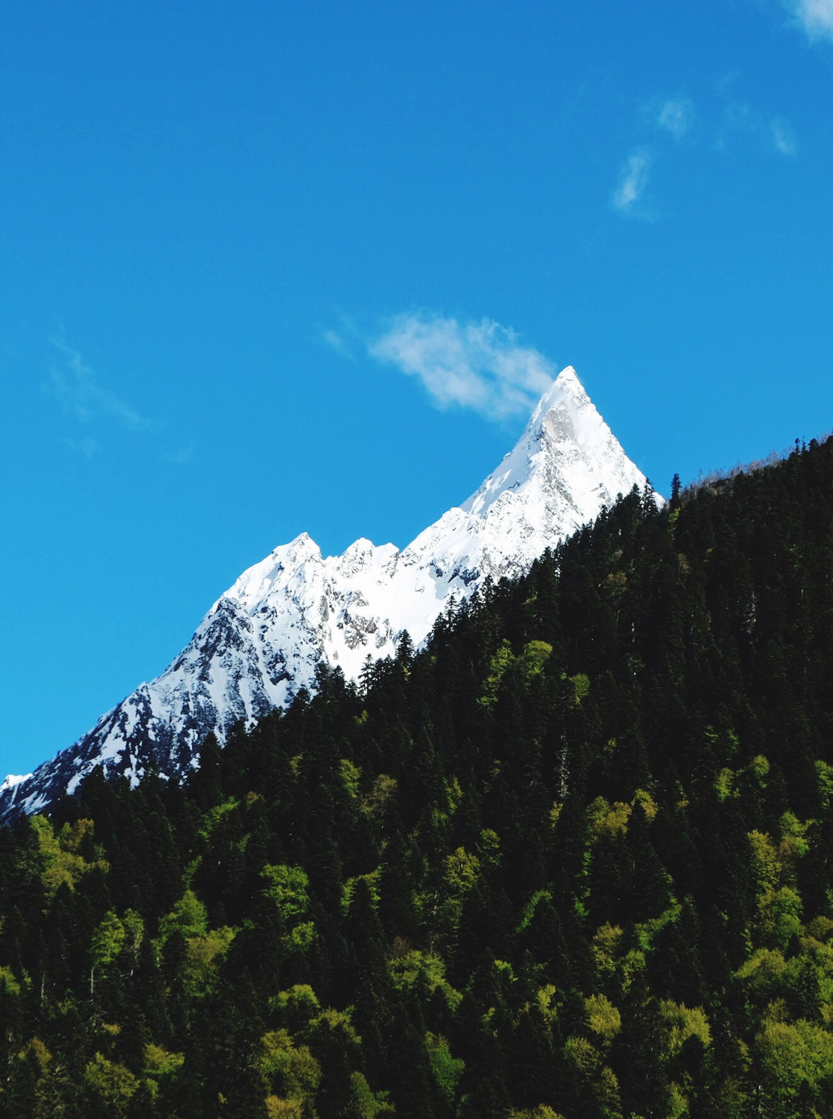 mountain, nature, snow, scenics, beauty in nature, tranquil scene, day, tranquility, mountain range, sky, winter, snowcapped mountain, tree, cold temperature, blue sky, peak, outdoors, blue, landscape, no people, range
