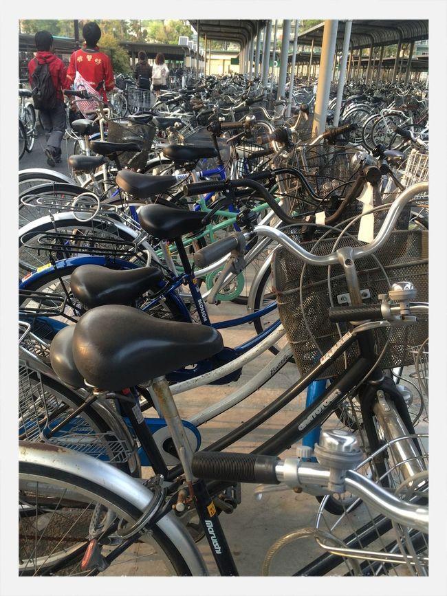 学校的停车场,自行车的停车场!泛滥了!