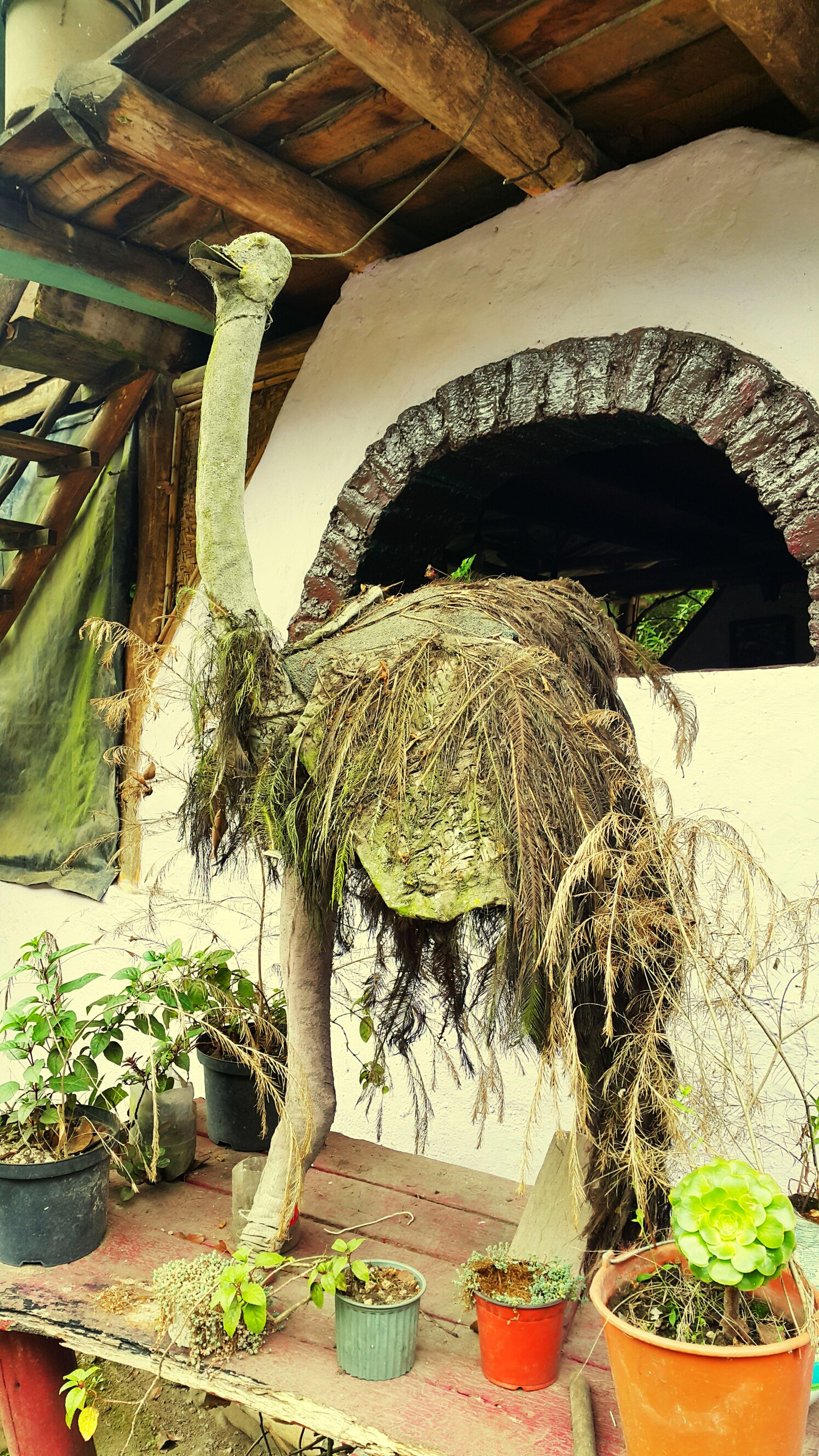 Nature Art Art, Drawing, Creativity Green Arte Arte Natural