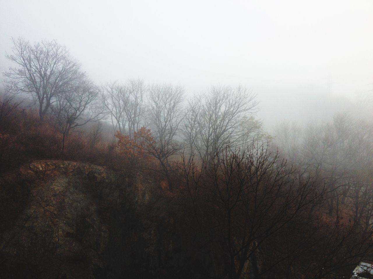 Nakhodka Fog Город Находка туман