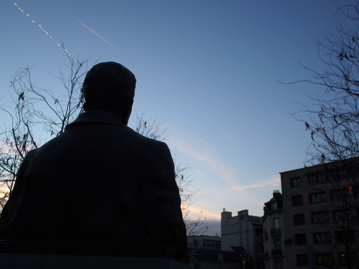 Back Statue Architecture Bare Tree Building Exterior Clear Sky Low Angle View Not Real People One Person Rear View Silhouette Sky