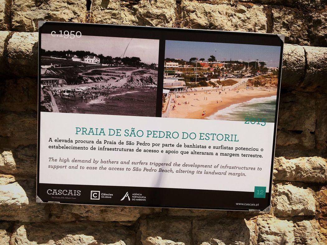 on the wall Cascais Morning Walk S. Pedro Do Estoril