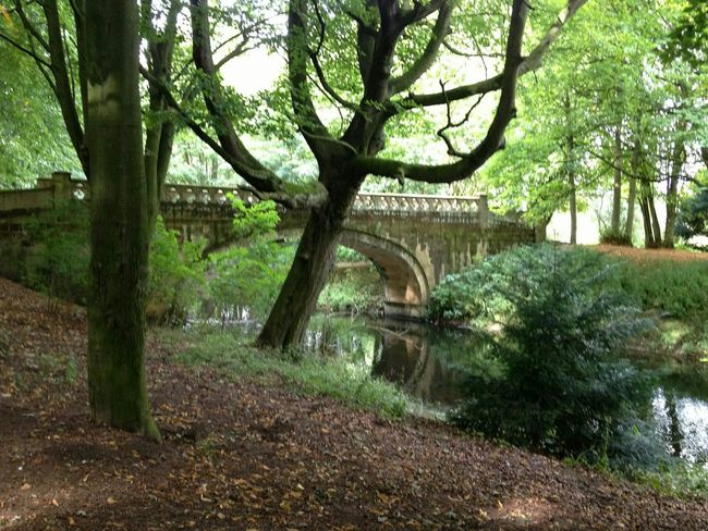 Hardwick Hall County Durham Trees Outdoors Scenery Beautiful Nature