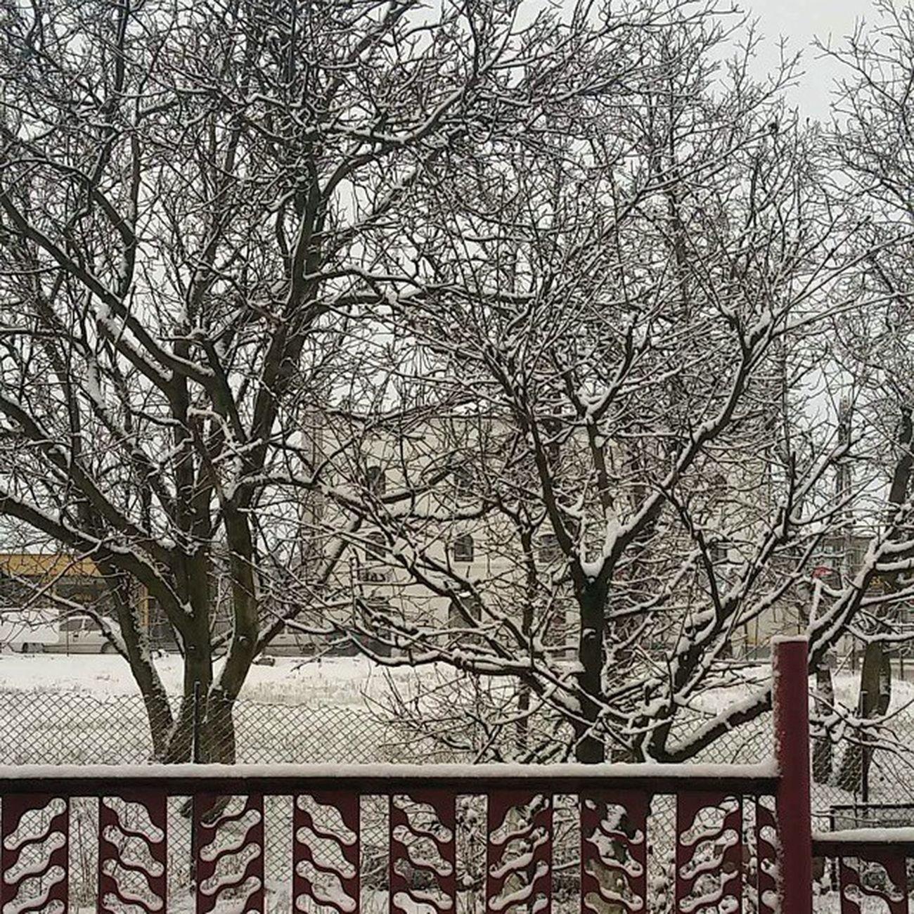 Zima Jak Jeszcze Była XD Winter śnieg śnieg Snow Zdjeciasnieguwchuj Jakosc Poszla SIE  Jebac Ale Okej