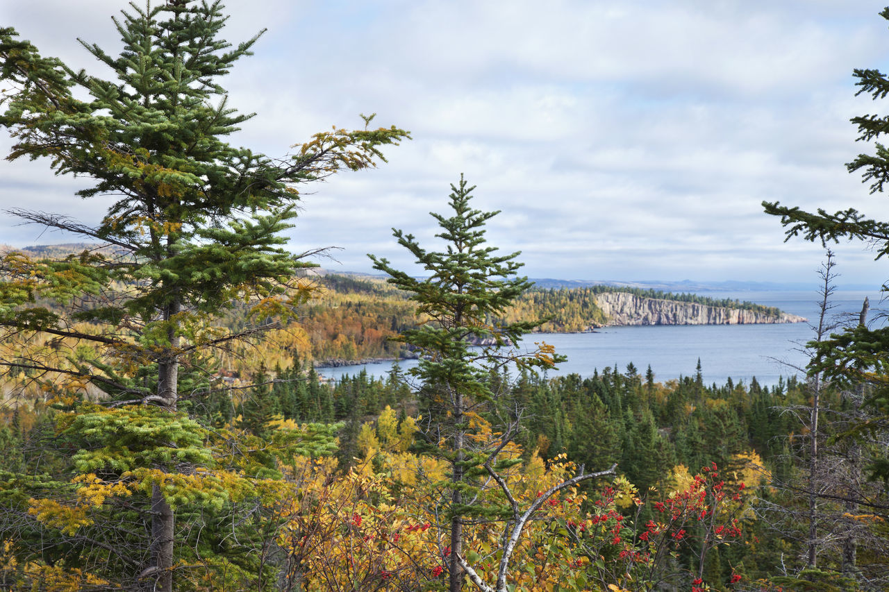View of cliffs along Lake Superior Minnesota in the fall Autumn Birch Cliffs, Color Fall High Angle View Hills Lake Lake Superior Lake View Landscape Minnesota North Shore Palisade Head Pine Scenics Shore Trees Water