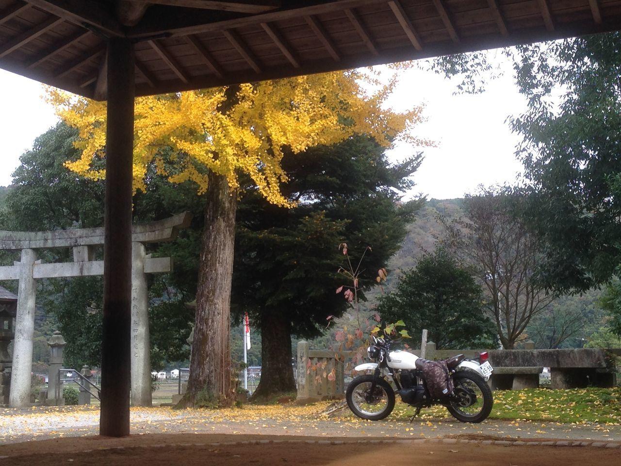 No Filter Kawasaki Enjoying Life 土俵 Moto Life Hello World いつか辿り着く場所 Getting In Touch