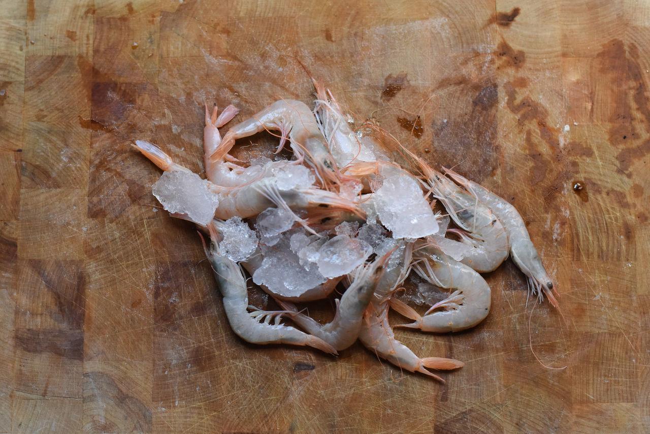 Terzo Tempo - Ristorante Tabula ph. Carolina Ardizzone Close-up Day Fish Healthy Eating Healty Ice Nature No People Outdoors Sea Seafruits Shrimps Wood Woodtable