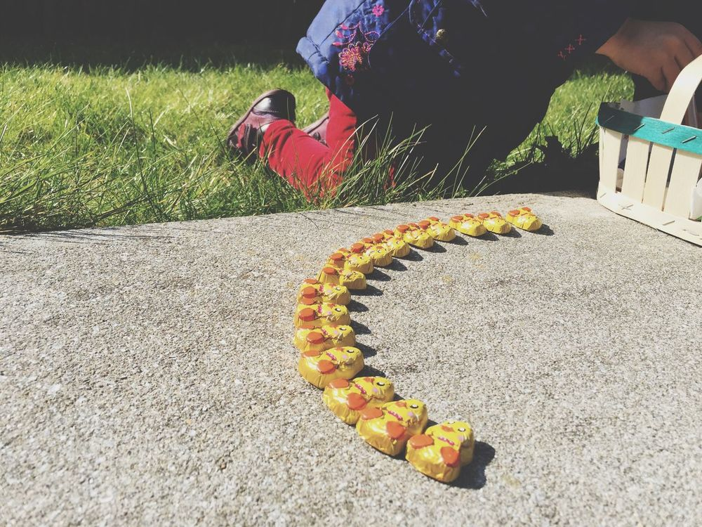 Easter Ready EyeEm Gallery Fun Yellow Grass Children Game Childernplay Rows Of Things Row Pattern Chick Chicks