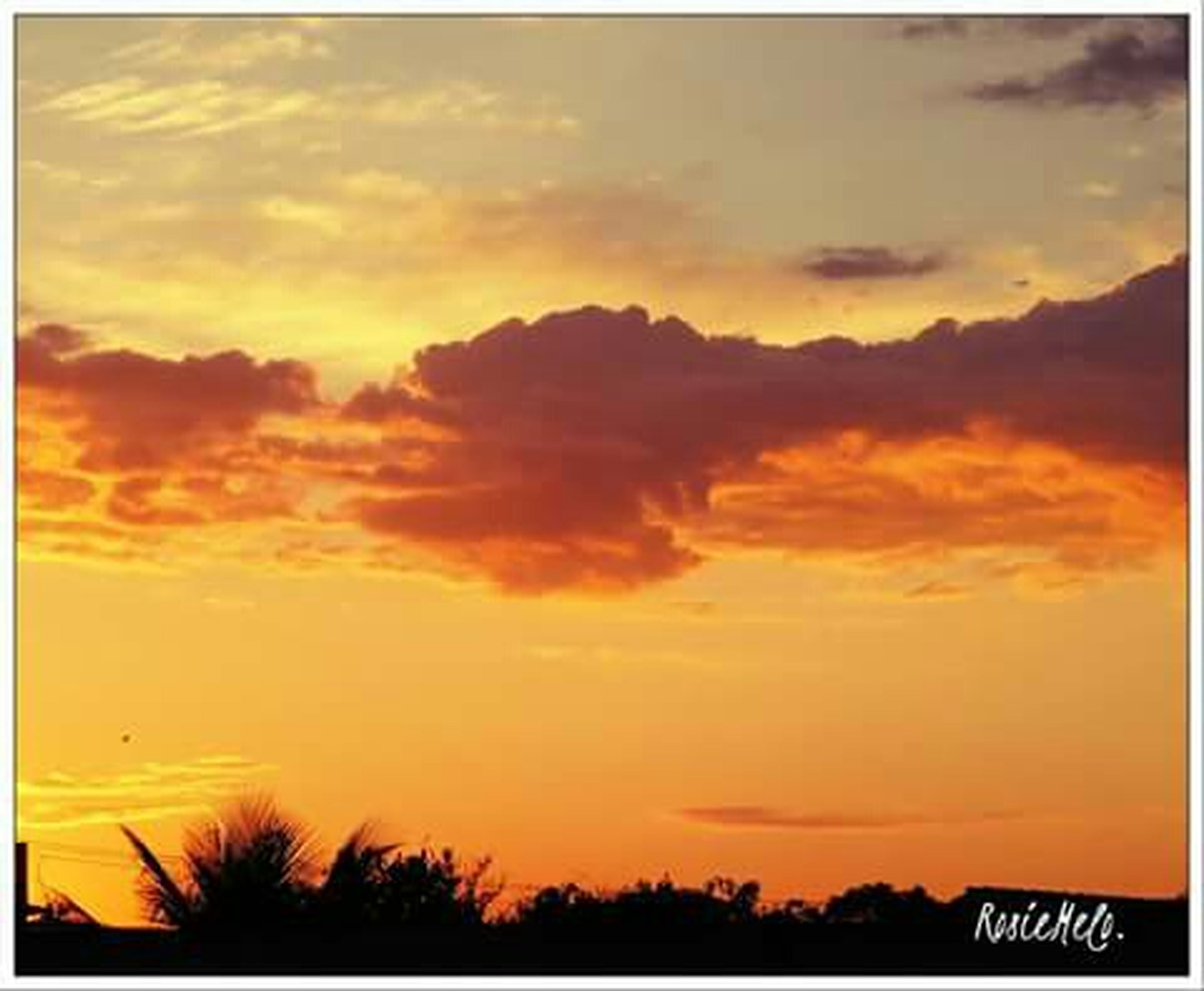 transfer print, sunset, sky, auto post production filter, orange color, cloud - sky, beauty in nature, scenics, tranquility, tranquil scene, nature, tree, cloud, low angle view, dramatic sky, cloudy, idyllic, yellow, outdoors, silhouette