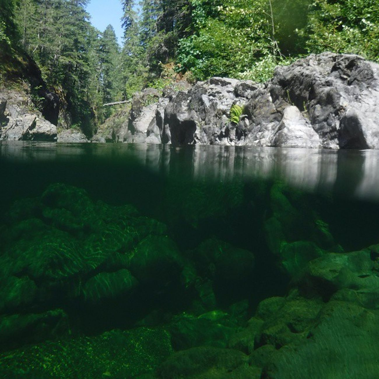 Nice day swimming Sookebc Sooke Natgeo Clearwaters  Beautifulbc Imagesofcanada Vancouverisland Canada Travel Potholes Sookepotholes