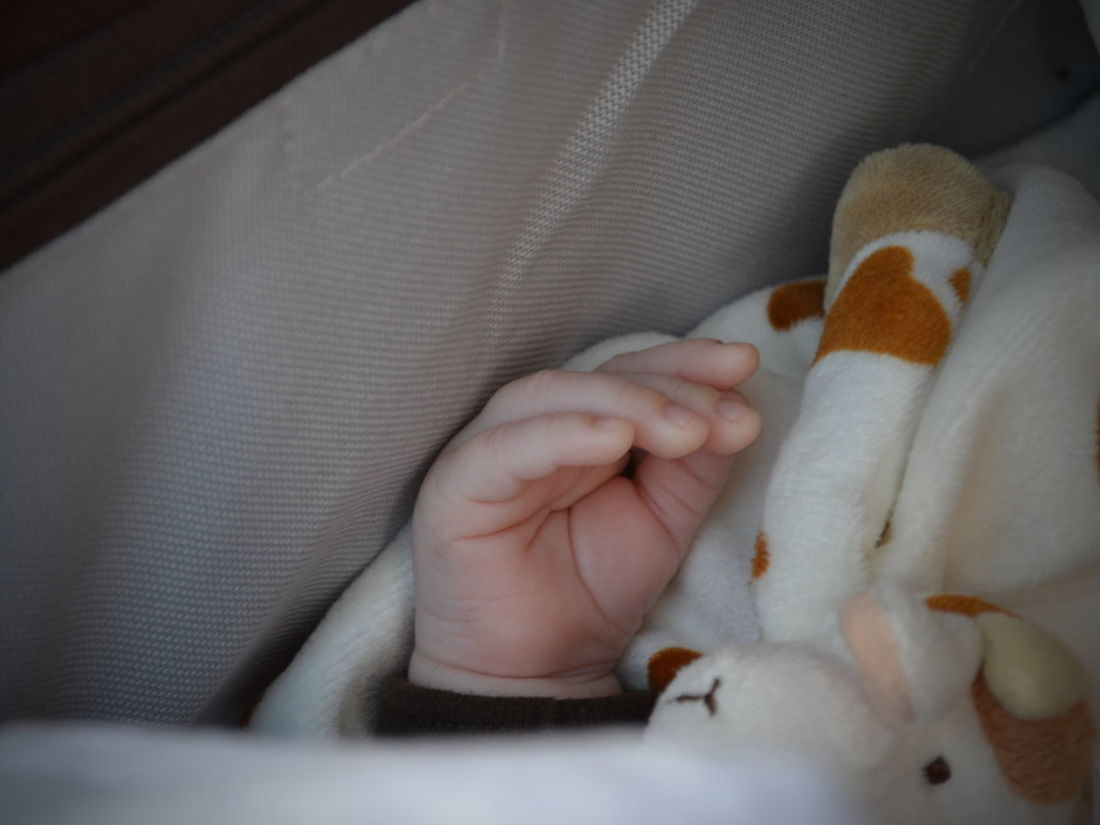 that early days walk... Baby Baby Hand Baby Hands  Close-up First Child First Walk Lifestyles Out For A Walk Pram Protected Life Selective Focus Sleepy Sleepy Baby Soft Toy