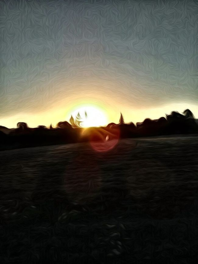 Enjoying Life Painting Memories Re Edited Color Palette Colour Of Life Sunrise Explosion Oregon Sunrise Tree Hugger 🌳 Its The Main Event! Trees Silhouettes Sunrise_Collection Rings Around The Sun Sunrise Sunrings Sun Rings Sunrise Ring Around The Sunrise