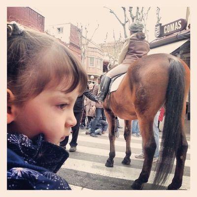 ... i Cavalls