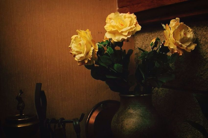 Still Life Flowers Photography Decor