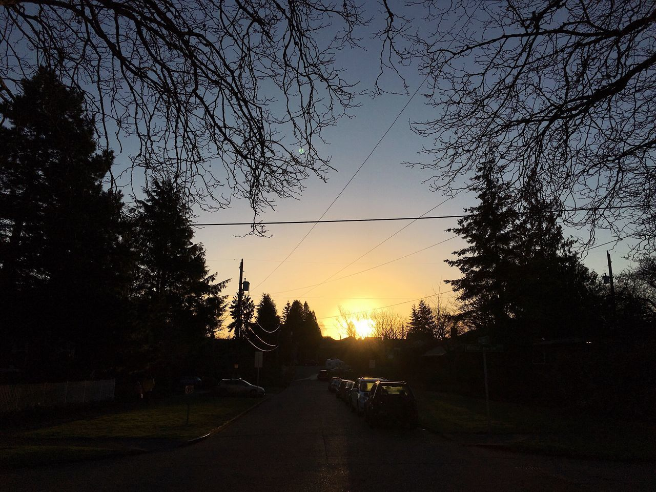 morning walk to the bus. West Seattle