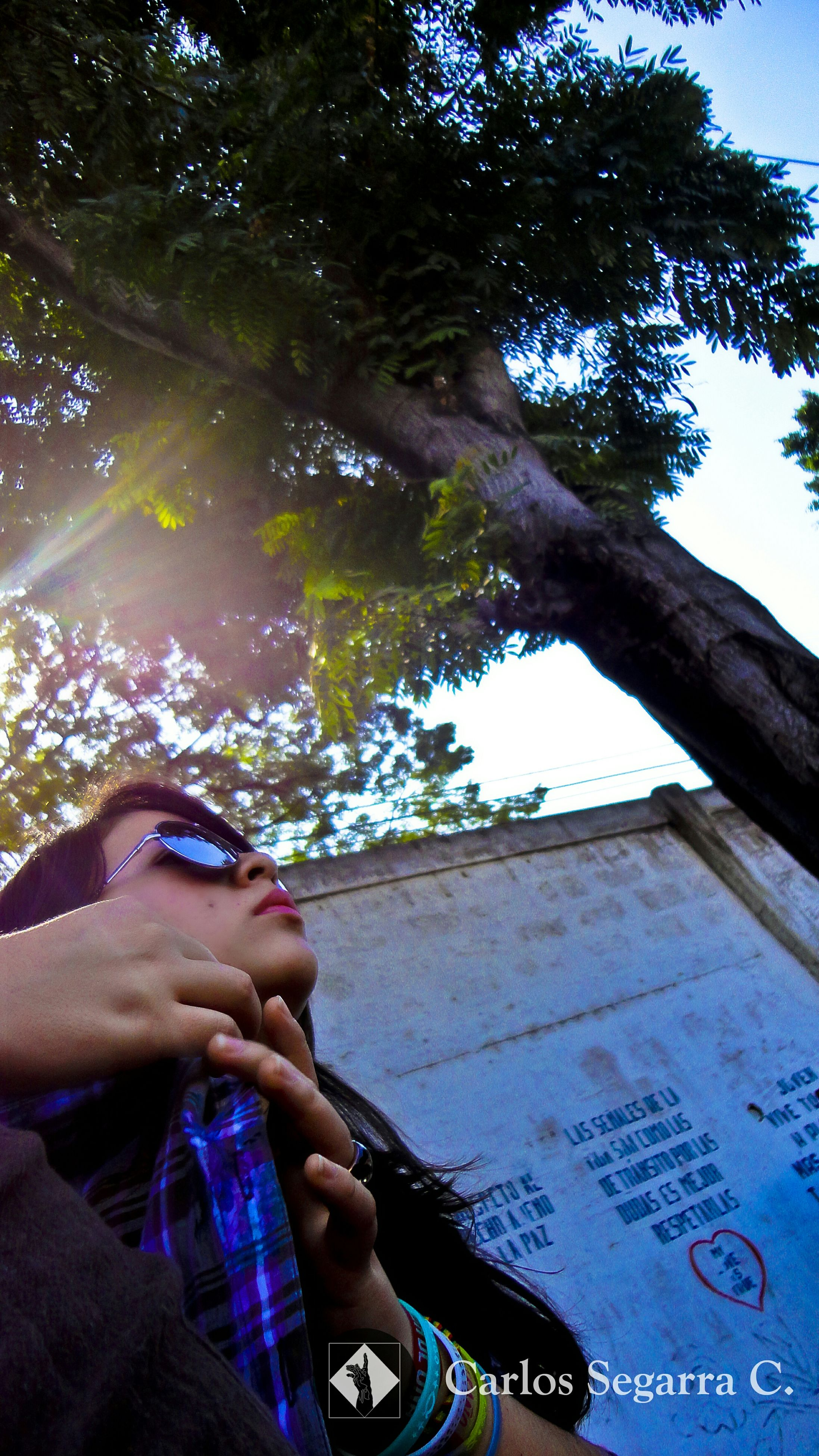 lifestyles, leisure activity, tree, young adult, holding, photographing, person, photography themes, headshot, men, sunglasses, personal perspective, sky, young men, day, communication