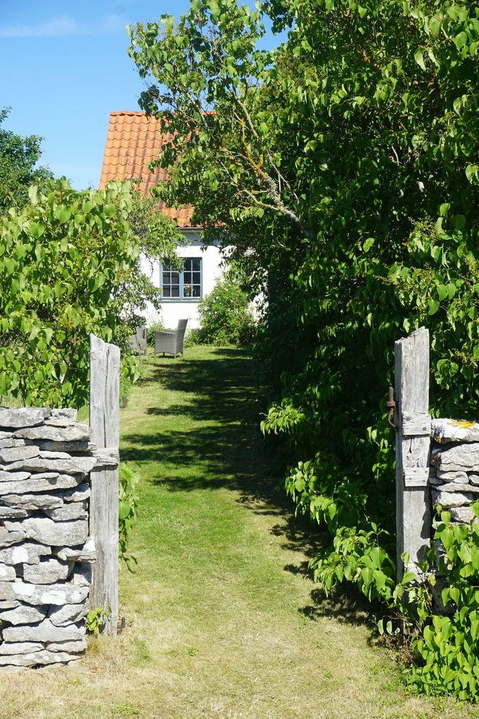 Dämba, Fårö Architecture Building Exterior Countryside Day Fårø Gotland Gotland, Sweden House Ingmarbergman Nature No People Outdoors Rural Summer Dämba Faro