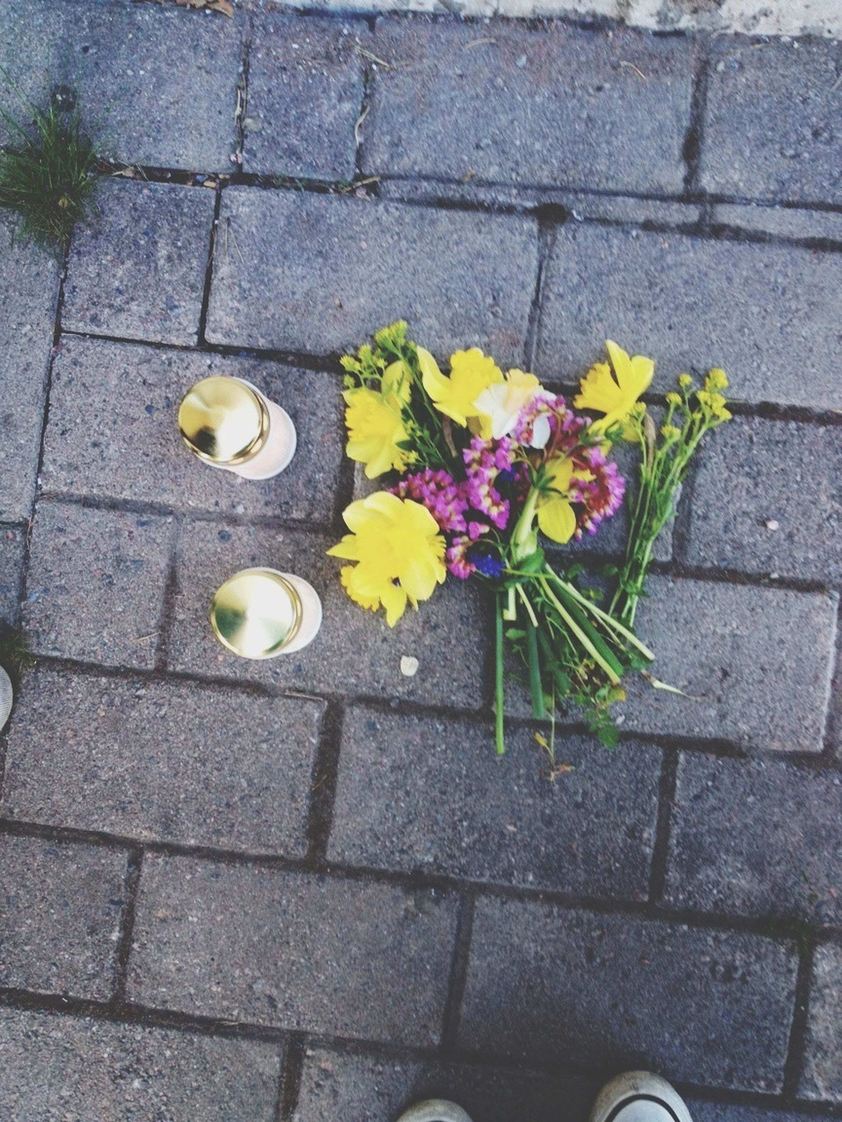 high angle view, yellow, flower, street, cobblestone, paving stone, freshness, sidewalk, directly above, footpath, fragility, leaf, day, tiled floor, outdoors, pavement, plant, petal, shoe, no people