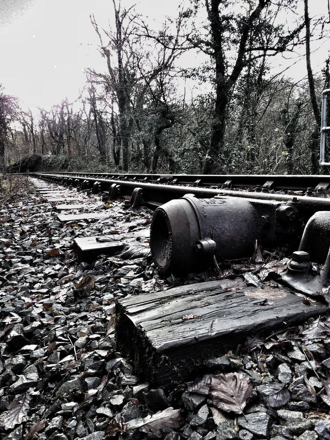 Metal Outdoors Close-up No People Amateur Photography EyeEm Best Shots EyeEm Gallery Eye For Photography Motion Railway Track Sleeper Wood Traintracks Abandoned & Derelict Abandoned Railroad Track