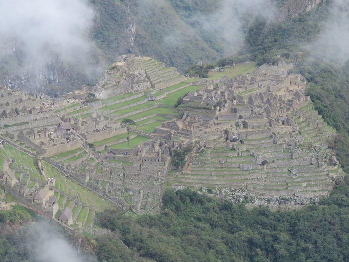 Ancient Architecture Ancient City Ancient Civilization Ancient Ruins Fog Idyllic Inca Inca Ruins Inca Trail Machu Picchu Machu Picchu - Peru Machu Picchu Road Machu Picchu Sun Gate MachuPicchuPerú Mountain Peru Sun Gate Tranquil Scene Tranquility Travel The World