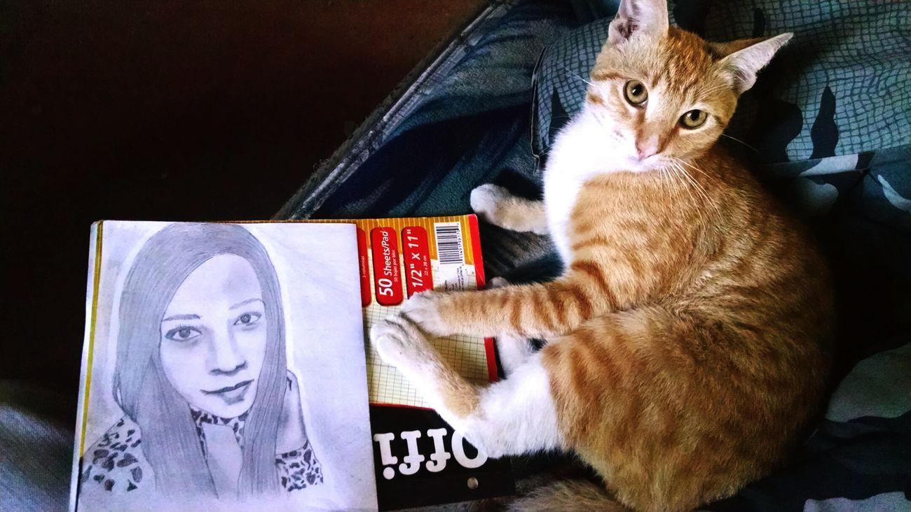 Cara Felino Animalface CATPLAY Cats 🐱 Cat Lovers Dibujo A Lapiz Rayitas Name Eyes<3