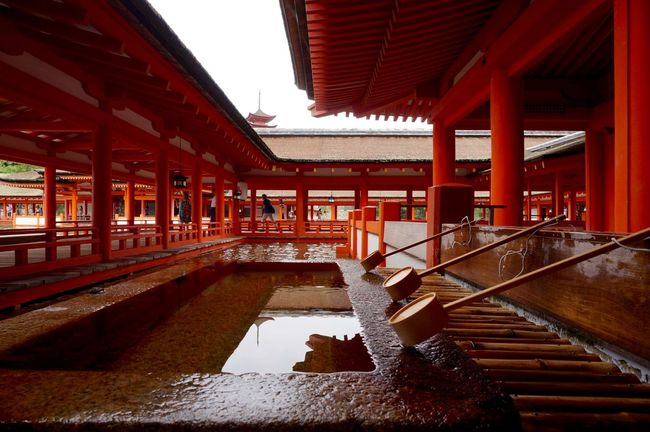 Pure water Architecture Architecture Buddhism Building Exterior Built Structure Cultures Day Itsukushima Shrine Japan Japan Photography Japanese Culture Miyajima Miyajima Island Purity Red Reflection Temple Temple - Building Water Water Reflections