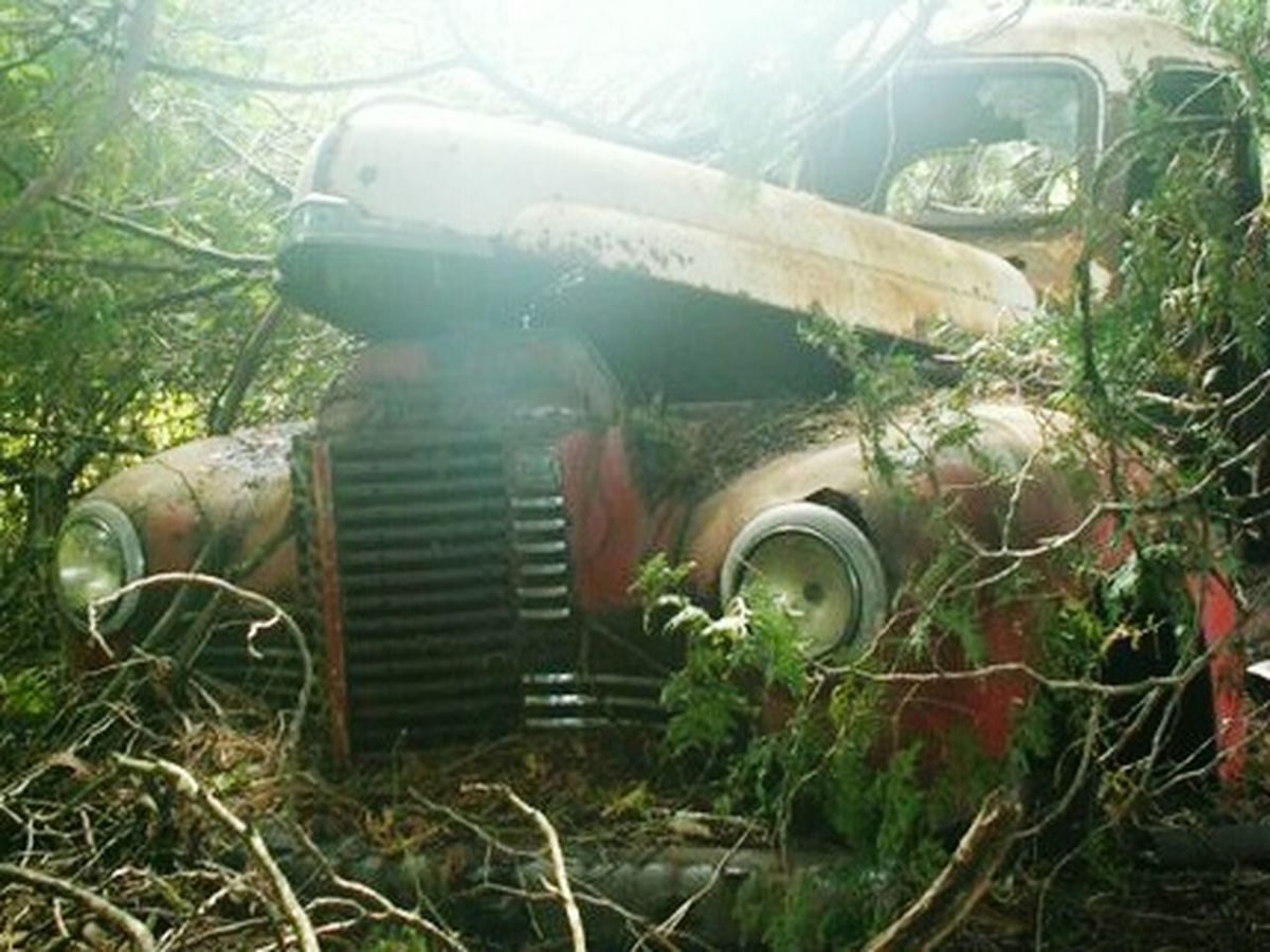 Sad old truck abandoned in the woods. Near Woodstock, Ontario. August 2006. Vintage Cars Foundinthewoods Ghostly Rusty Rustporn  Old Car Taking Pictures Of Old Cars Abandoned