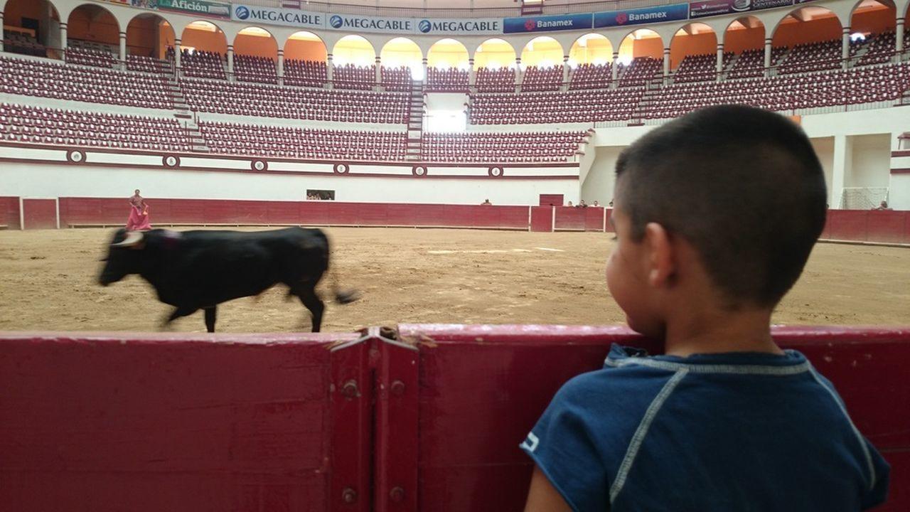 Mi Habib Mi Hijo  Mis Hijos Toreros Bullfight Aficion Toros