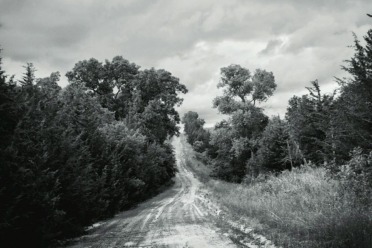Dirt Road Hillcountry Back Roads Monochrome Rural Scenes Rural Exploration Photography Rural Landscape Polarizing Filter Fuji X-T1