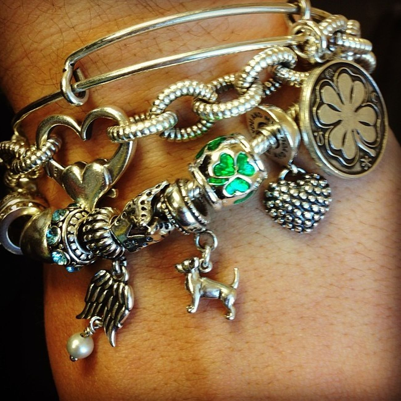New charms! Chihuahua Shammy Alexandani Spoiled
