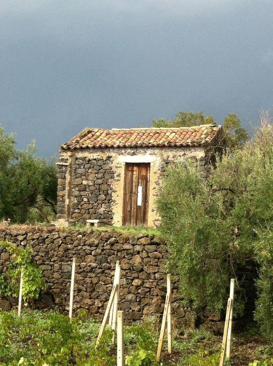 Taking Photos Etna Sicily