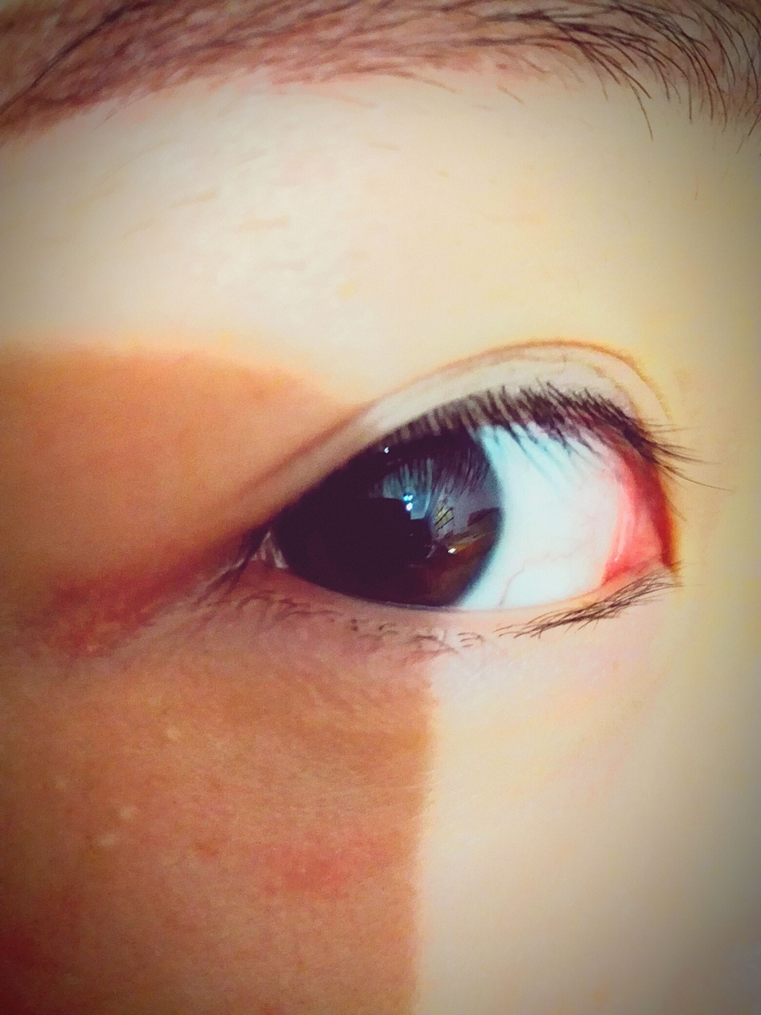 human eye, close-up, indoors, lifestyles, headshot, human face, eyelash, eyesight, looking at camera, portrait, young adult, part of, human skin, leisure activity, sensory perception, reflection, person