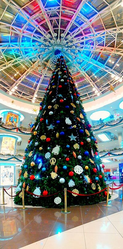 Hallo World Taking Photos Today Was A Good Day Waiting For Christmas Christmas Tree Soon The New Year Christmas Mood Wonderful Day Shopping Time Colors Belarus Minsk