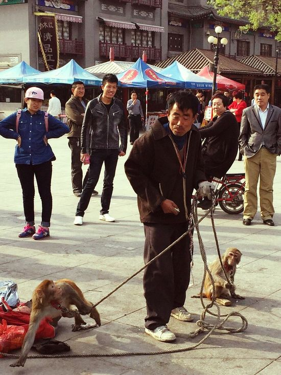 Monkey charmer at Tianjin, China