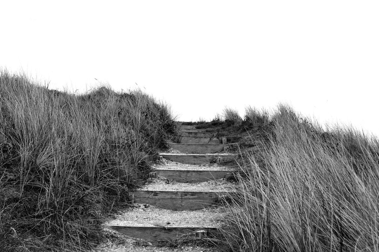 Sandy steps Steps And Staircases Steps Staircase Railing No People Day Tranquility Outdoors Clear Sky Grass Nature Sky Blackandwhite Photography Greytones Beach Beauty In Nature Seaside Beach Sea Landscape Beachphotography