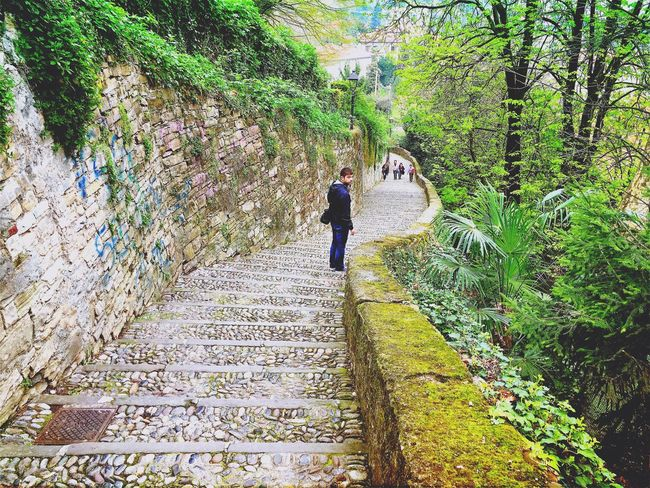 Visual Witness Shootermag My Own Style Of Beauty EyeEm Traveling EyeEm In Bergamo Tourist Steps Walking Vacations Nature Moss Outdoors Footpath Rear View Travel Tourism Walkway Tranquility Tranquil Scene The Way Forward Casual Clothing Scenics