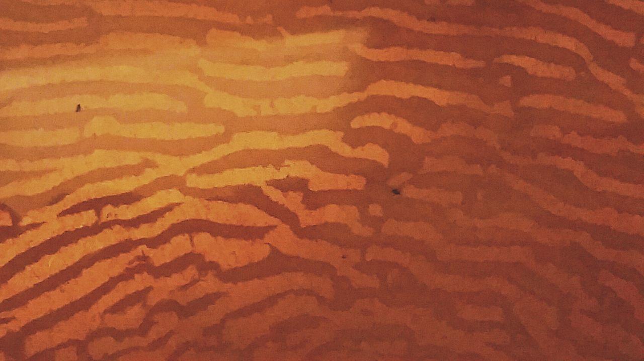 Pattern Pieces Sun Sole Onde Waves Liquid Water Water Acqua Aqua Brodo Broth Soup Macro