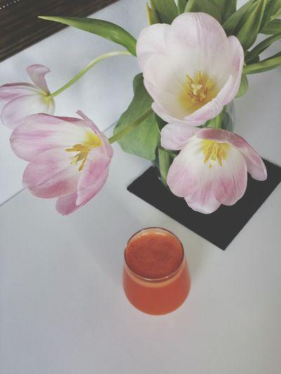Tulips Flowers Carrot Juice Healthy