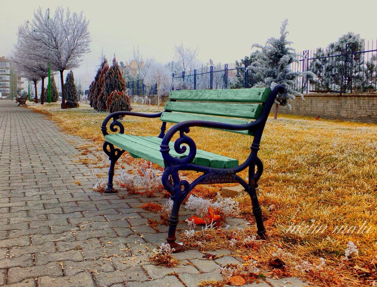 Colors Of Autumn Nature Landscape Popular Photos