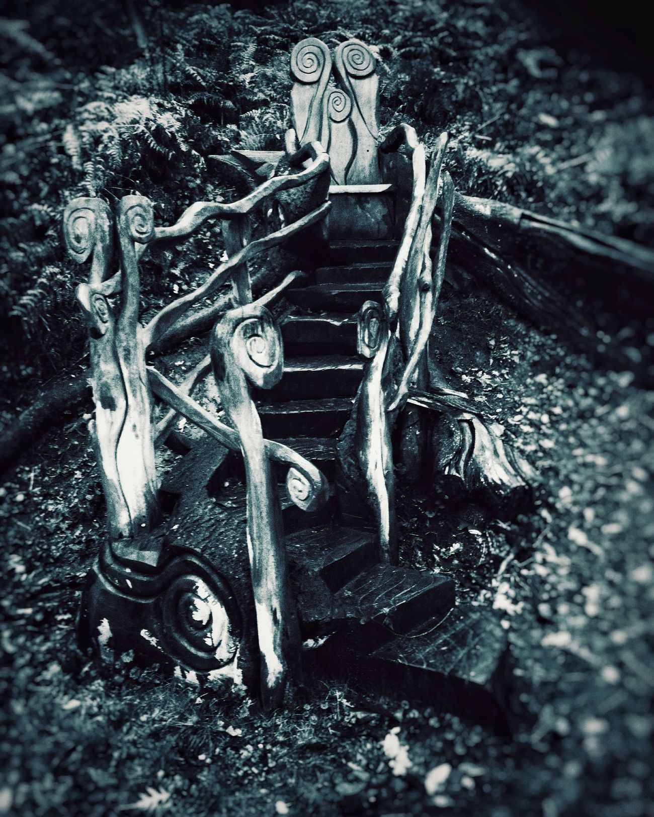Wooden seat made by the staff at my local arboretum Sculpture Wooden Seat Duotone Surrey Nationaltrust