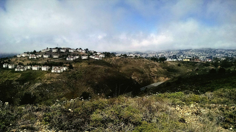 Hiking San Bruno Mountain Bay Area