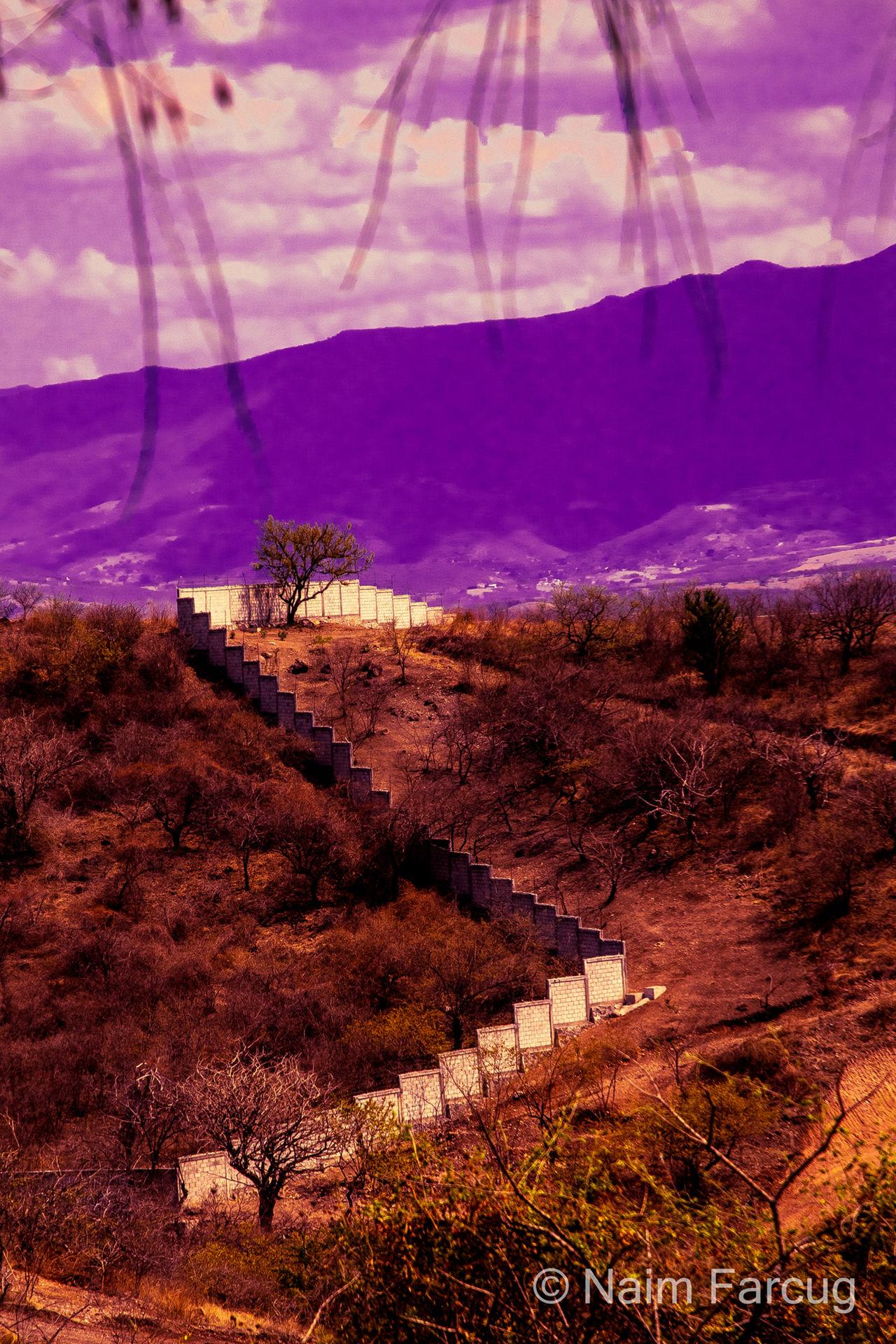 """""""Barda"""" Toma: 03 de mayo de 2015 Cámara: Nikon D3200 Velocidad de obturación: 1/1600 seg. Abertura de diafragma: f/4.5 a ISO 100 Distancia Focal: 70 mm Relaxing Taking Photos"""