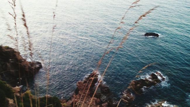Sea View Summer Nature Photography Nature My Favorite  Relaxing Time Relaxing Enjoying Life Algeria
