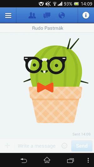 I Love Cactus Cactus <3 Cactus Cactaceae #cactus