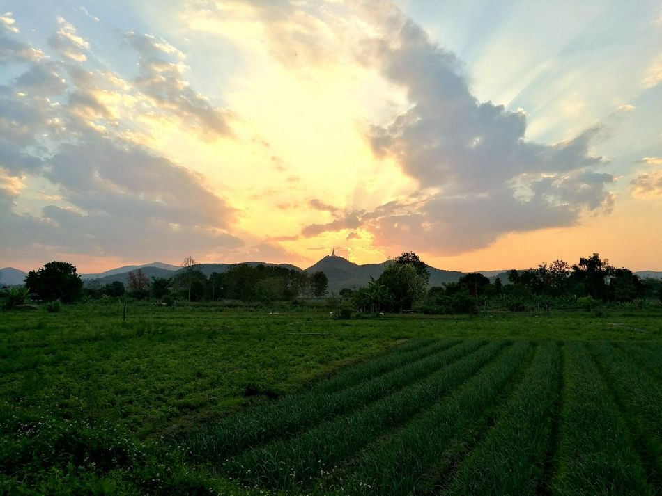 Sunset Cloud - Sky Sky Nature Landscape Beauty In Nature Thailand Chiangrai Wiangpapao Huaweiphotography P9plus HuaweiP9plus P9PlusPhotography Outdoors Farm Field EyeEmNewHere