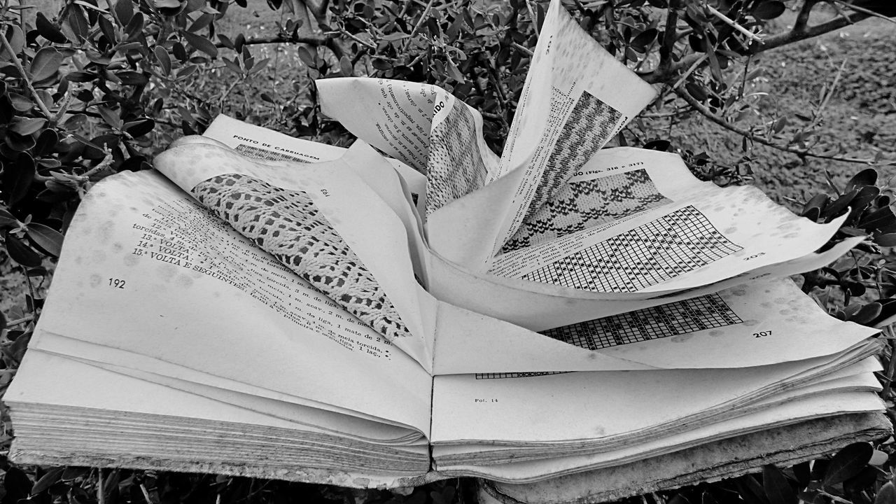 Close-Up Of Abandoned Book